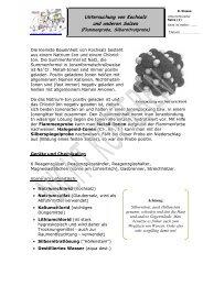 Untersuchung von Kochsalz und anderen Salzen