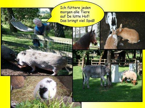 Urlaub/Therapie Hundephobie www.de-luette-hof.de - De lütte Hof