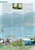 lykische küste - Seite 3