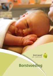 SJ MA e265 borstvoeding.pdf (372 Kb) - GasthuisZusters Antwerpen