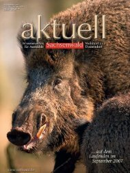 in Aumühle fest etabliert - Kurt Viebranz Verlag