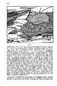 Neue Fossilfunde und Beobachtungen am Kalkalpennordostrand ... - Seite 2