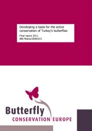 Final Report October 2011 for the BBI-Matra/2008/015 ... - Vlindernet