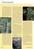 Gynäkologie - phytotherapie.co.at - Seite 6
