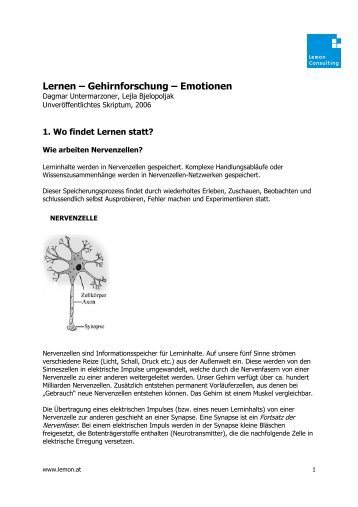 Lernen – Gehirnforschung – Emotionen
