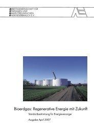 Bioerdgas: Regenerative Energie mit Zukunft - Biogaspartner
