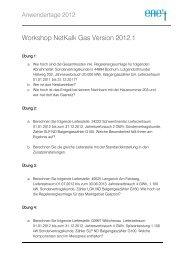 NetKalk Gas – Neuerungen der Versionen 2012 Detlef Vondeberg