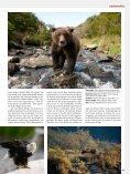 nordamerika - David Bittner - Page 6