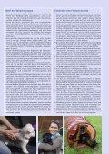 Sonderdruck - SKG - Seite 2