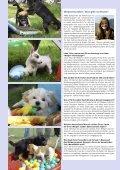 Sonderdruck - SKG - Seite 3