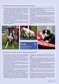 Sonderdruck - SKG - Seite 4