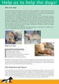 Animal Care Samos - Page 4