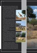 Reisen - Seite 6
