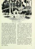 VOLUNTEER - Page 7