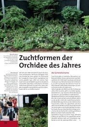 24 - Cypripedium.de