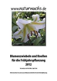 Zwiebeln Frühjahr 2012.indd