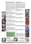 Zwiebeln Frühjahr 2012.indd - Seite 2