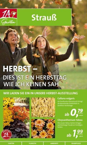 2,99 - 1A Garten Strauß