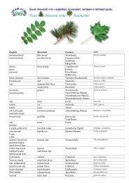Slovar drevesnih vrst - Slovarji.info