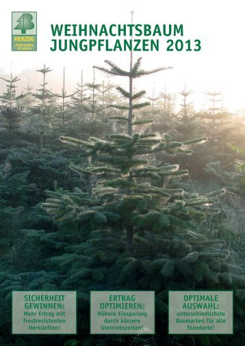 weihnachtSBaUM JUngpflanzen 2013 - Herzog.Baum