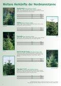 weihnachtSBaUM JUngpflanzen 2013 - Herzog.Baum - Seite 4