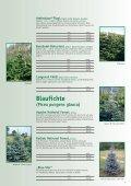 weihnachtSBaUM JUngpflanzen 2013 - Herzog.Baum - Seite 5