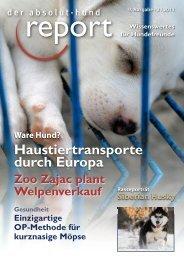 Tierleid - Problemhundtherapie in NRW