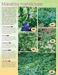 Smultronställets Vårtidning 2012 - Page 7