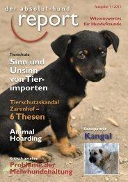 Tierschutz - Absolut-Hund