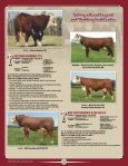 Randall - American Hereford Association - Page 4