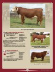 Randall - American Hereford Association - Page 5