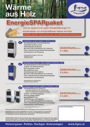 Flyer EnergieSPARpaket 2012 (Herbst)