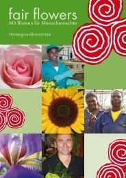 fair flowers – Mit Blumen für Menschenrechte - Christliche Initiative ...