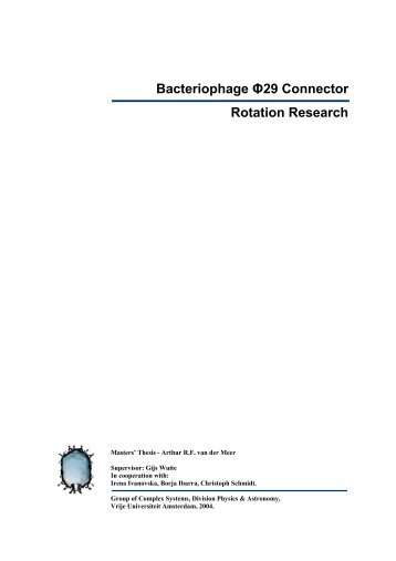 Bacteriophage Φ29 Connector Rotation Research