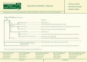 Interpretation von Harnkulturen (.pdf Dokument) - Labors Mühl-Speiser