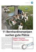 Tierquälerei Singvogelfang Sportarten mit und um ... - Tierheim Linz - Seite 3