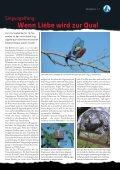 Tierquälerei Singvogelfang Sportarten mit und um ... - Tierheim Linz - Seite 7