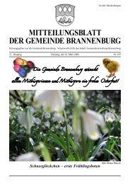 Schneeglöckchen – erste Frühlingsboten - Brannenburg