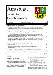 Amtsblatt 03/2007 - Stadt Lauchhammer