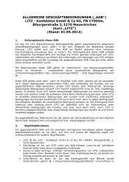 Download Allgemeine Geschäftsbedingungen - LITZ