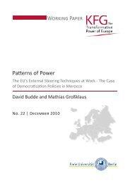 Patterns of Power Working Paper - Userpage - Freie Universität Berlin