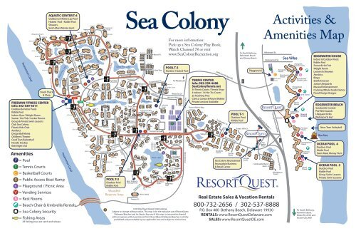 Sea Colony on