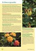 Der pflanzliche Arzneischatz Schwerpunktthema - phytotherapie.co.at - Seite 6