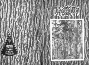 Forestry in Minnesota - Minnesota Department of Natural Resources