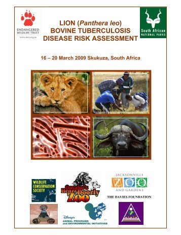 an introduction to the bovine tuberculosis the disease