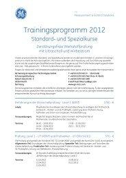 Trainingsprogramm 2012 - GE Measurement & Control