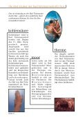 Am Anfang einer The - Page 6