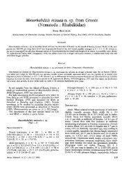 Mesorhabditis minuta n. sp. from Greece - Ressources ...