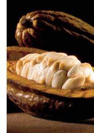 Hier klicken und die zauberhafte Geschichte der Schokolade - Lindt
