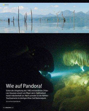 Barakuda Reiseangebote 2012 - Unterwasser